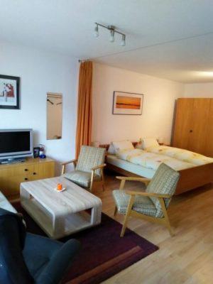02-b-appartement-1-chambre-Royal33-séjour-Loèche-les-bains-appartement-de-vacances-à-louer